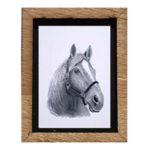 Framed Print - Horse