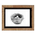 Framed Print - Nest